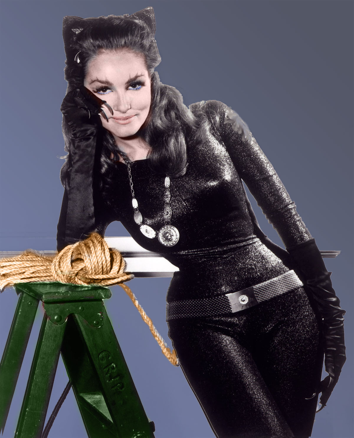 The ...  sc 1 st  Thomas Welsh & Top 5 Catwoman Costumes Better than Anne Hathawayu0027s - Thomas Welsh