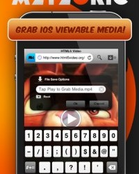 Meteoric Download Manager Review (iPhone)