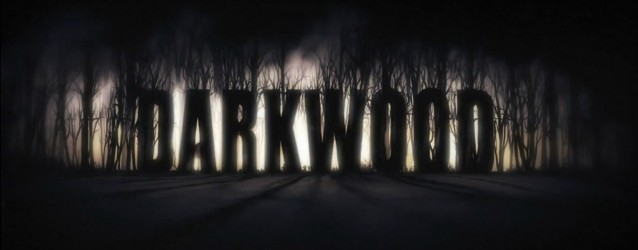Should I be excited about… Darkwood (PC)