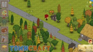 Towncraft5